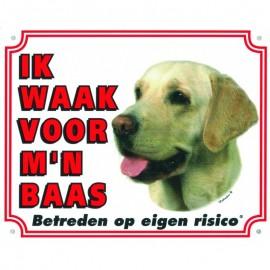 Labrador Wit